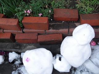 2011.125g 雪だるま.JPG